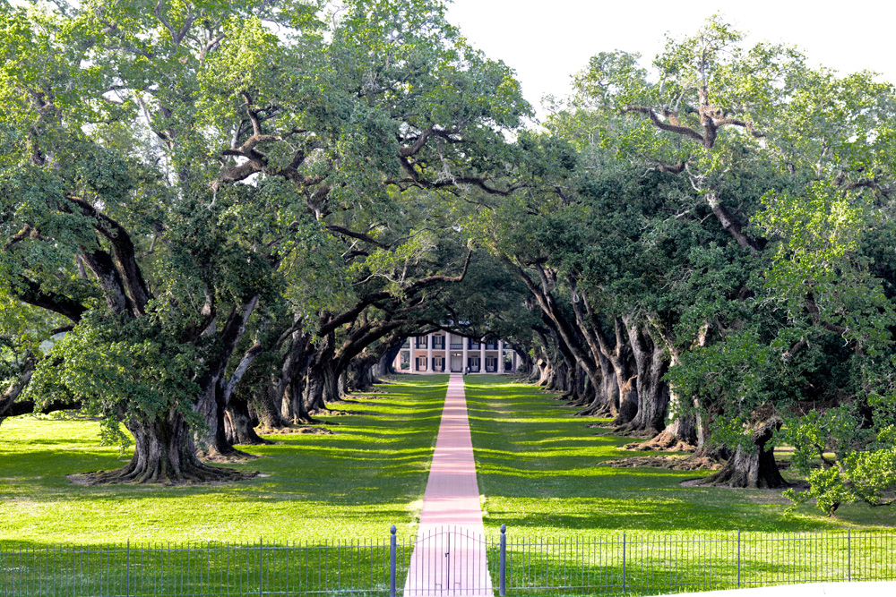 Self Guided Plantation Tours New Orleans