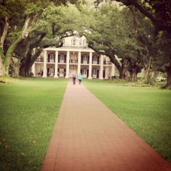 Walking through the oaks.