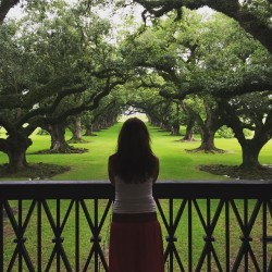 Looking out on the historic grounds.